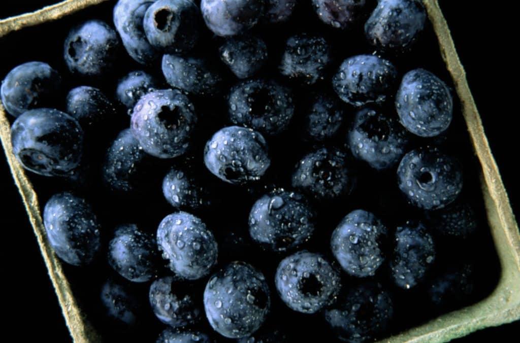 blueberry renal diet