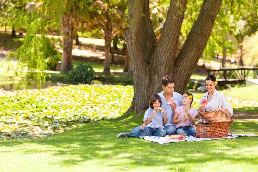 Summer picnic renal diet